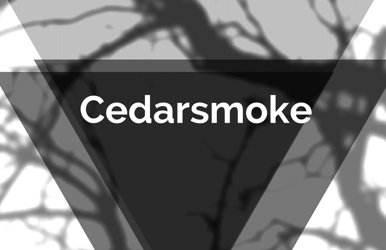 Cedarsmoke's Debut EP 'False Start To The Rat Race' Is A Metaphor-Laden, Indie-Rock Gem