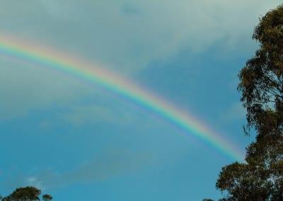 MMVAF: Rainbow after a bit of rain